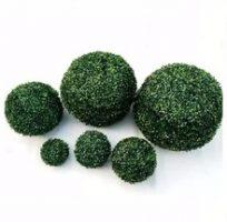 Dekoratyvinė gėlė burbulas, žalias