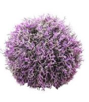 Dekoratyvinė gėlė burbulas, lavanda 10; 20; 25; 30; 45 cm