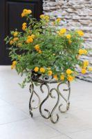 Gėlių stovas (34x30cm) Art.10-1519, stovas gėlėms, stovas gėlei, gėlių stovai, vazono laikiklis, vazono stovas, vazono padėklas