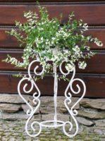 Gėlių stovas (60x45cm) Art.10-1457, stovas gėlėms, stovas gėlei, gėlių stovai, vazono laikiklis, vazono stovas, vazono padėklas