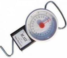 svarstyklės - bezmenas - 22kg